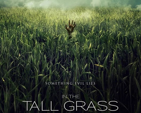 _In The Tall Grass poster crop